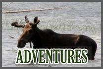 adventures-box-new